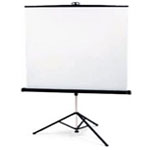Projector Screen